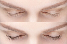Woman Eyelash Tinting Before And After. Henna Tint, Lamiation, Keratin