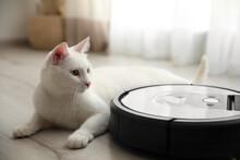Modern Robotic Vacuum Cleaner And Cute Cat On Floor Indoors