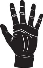 Palm Hand Drawn Illustration - Palmistry - Hand Lines