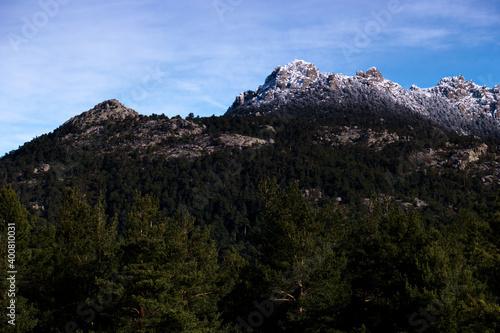 Fototapeta krajobraz góry las drzewa natura  obraz