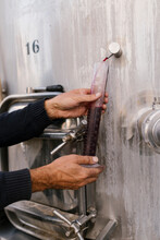 Hands Of Winemaker Collecting Red Wine For Examining Temperature At Wine Cellar