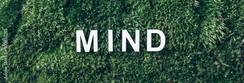 Fototapeta Word Mind on moss, green grass background