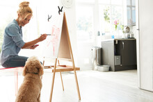 Mature Woman Sitting With Dog While Painting On Canvas At Home