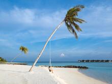 Woman Swinging On Rope Against Sea At Beach, Bali