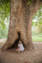 Boy Looking At Hollow Opening Of Tree Trunk In Park