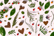 Leaves, Pine Cones, Little Branches And Strawberry Tree Fruits In Autumn Pattern, Illustration