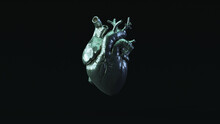 Silver Anatomical Heart With Blue Green Moody 80s Lighting 3d Illustration Render