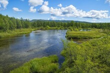 Taiga River With Crystal Clear Water. Natural Spawning Ground For Pacific Salmon. Khabarovsk Krai, Far East, Russia.