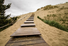 Wooden Path To Sand Dunes Of Nida, Lithuania
