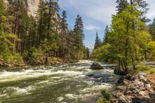 Merced River Flowing Through Yosemite Valley, Yosemite  National Park, California, USA