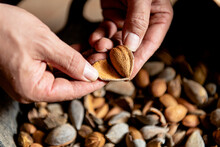 From Above Crop Anonymous Person Holding In Hands Opened Nutshell With Kernel In It Against Heap Of Almonds