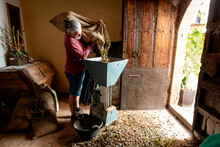 Full Body Farmer Putting Nuts Into Nut Cracking Tool While Standing On Floor Covered In Heap Of Nutshells In Room With Old Furniture And Barn Doors