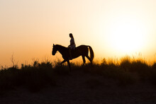 Silhouette Of A Girl Riding A Horse Under A Beautiful Sunset