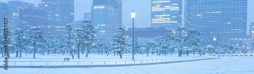 Obraz na plátně 東京大手町、日本庭園の雪景色、