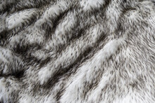 Gray Wolf Artificial Fur Background Texture For Design, Black And White Fake Animal Fell
