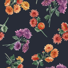Beautiful Seamless Floral Pattern With Watercolor Gentle Blooming Chrysanthemum Flowers. Stock Illustration.