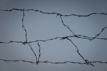 Barbed Wire Against The Blue Sky. Protection Of The Territory From Malefactors. Escape Prevention.