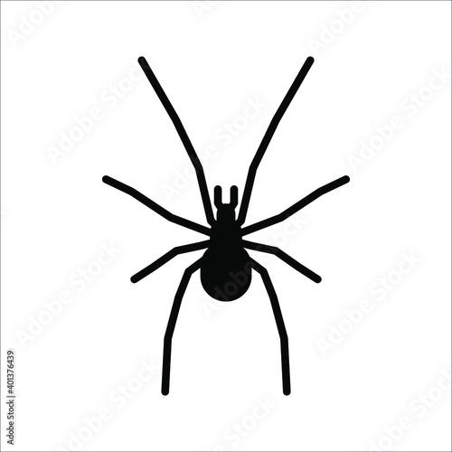 Fotografering spider icon. arachnid vector. animals sign. vector illustration