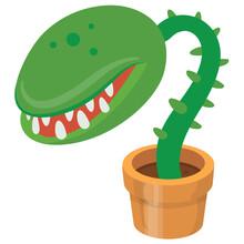 Man Eater Plant
