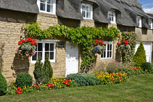 Traditional English Thatched Cottage With Colourful Garden
