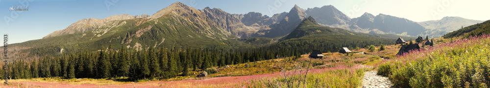 Fototapeta Panorama Tatr widok na Halę Gąsienicową