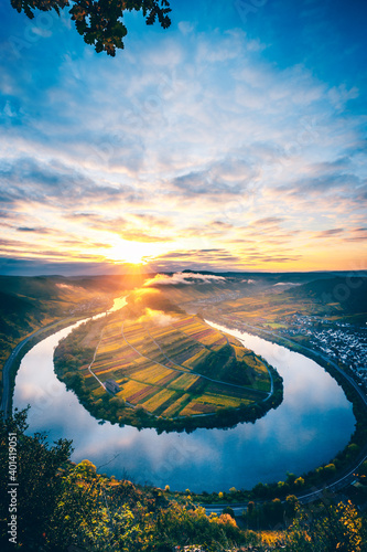 Obraz The Moselle loop, a beautiful river in Germany, makes a 180 degree loop. with vineyards and a great landscape and lighting in the morning - fototapety do salonu