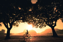 Silhouette Of A Woman Cycling Under Trees In The Early Morning During Beautiful Warm Sunrise In Rio De Janeiro With Sugarloaf Mountain In The Horizon