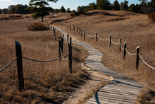 The Cordwalk Trail Crosses The Sand Dunes With Kohler-Andrae State Park, Sheboygan, Wisconsin In Early December