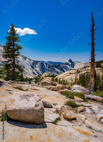 Fotografiet half dome from olmstead point yosemite national park
