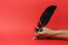 Writing With Feather Pen. Literature And Writing Novel Concept.