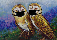 Art  Oil Paintings Of Cute Owl   Scared Of COVID Must Wear Masks Every Time.