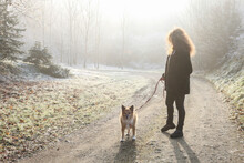 Morning Walk With The Dog. Young Woman And Her Puppy.