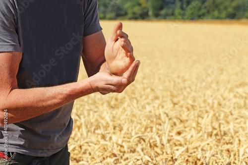 Canvas-taulu Landwirt prüft sein Getreide