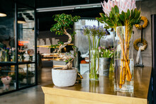 Different Amazing Flowers In Vases On Brass Counter In Flower Shop Loft Modern Interior. Floral Design Studio, Decorations And Compositions, Gifts. Small Business Concept.