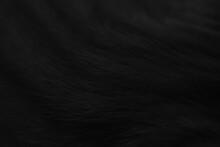Black Cat Fur Texture Background.