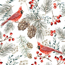 Christmas Seamless Pattern, Cardinal Birds, Red Berries, Fir Twigs, Cedar Cones, White Background. Vector Illustration. Nature Design. Season Greeting. Winter Xmas Holidays