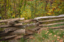 Rough Split Rail Fence ZigZags Along The Top Of Forest Hill In Autumn