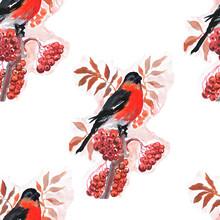 Bird, Bullfinch, Winter, Berry Branch. Hand Drawn Watercolor Illustration. Print, Textiles. Vintage, Retro. Patern Seamless