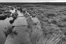 Ilkley Moor In The Rain