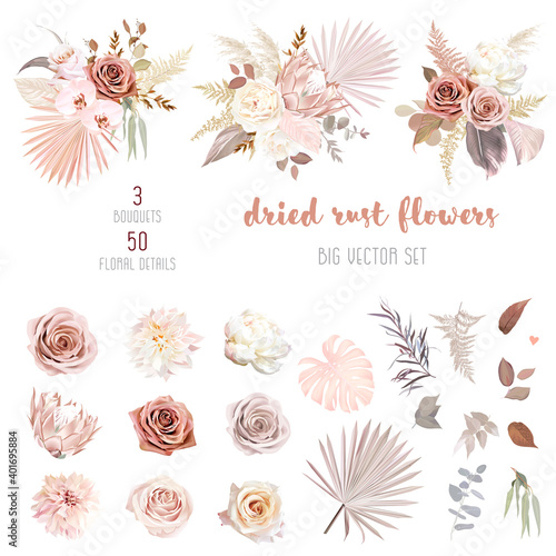 Fototapeta Trendy dried palm leaves, blush pink and rust rose, pale protea obraz
