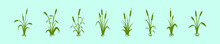 Set Of Cattail Cartoon Icon Design Template With Various Models. Vector Illustration Isolated On Blue Background
