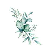 Watercolor Eucalyptus Bouquet. Hand Painted Eucalyptus Branches, Leaves And Flowers