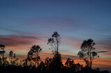 A beautiful view of the sunset sky over land with a lot of trees
