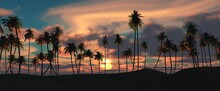 Silhouettes Of Palm Trees At Sunset, Palm Trees Against The Sky, Tropical Palm Trees Against The Background Of Clouds, 3D Rendering