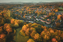 Suburban Area Among Autumnal Trees In UK
