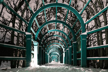 Wooden Arcade Entwined With Trees. Night Path In The Park. Winter Path In The Park. Russian Manor Park In Winter. Classic Old Park With A Wooden Arcade.