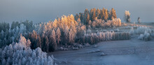 Beautiful Winter Landscape - Trees Adorned With Frost On The Frozen Hills Against The Background Of The Morning Fog