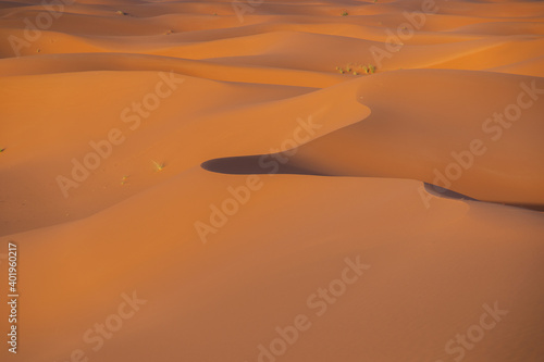 Canvas Sahara desert, dunes