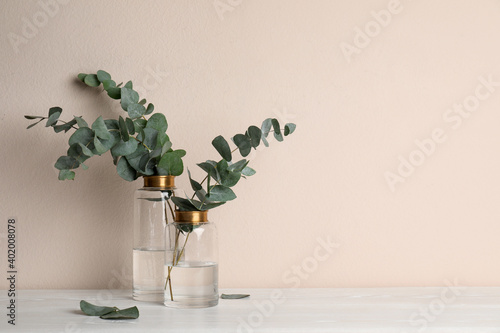 Vases with beautiful eucalyptus branches on white wooden table near beige wall. Space for text