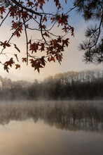 Vertical Image Of Fog Rising On The Water At Sunrise Framed By Fall Leaves And A Reflection Of Trees On Lake Lanier In Georgia